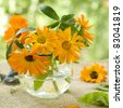 The orange flowers of calendula in glass vase. Selective focus - stock photo