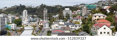 The panoramic view of Wellington city residential district (New Zealand).