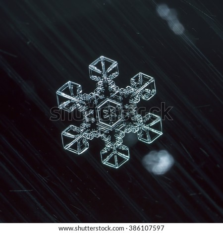 the real snowflakes in color lighting photo real snowflakes during a snowfall, under natural conditions at low temperature