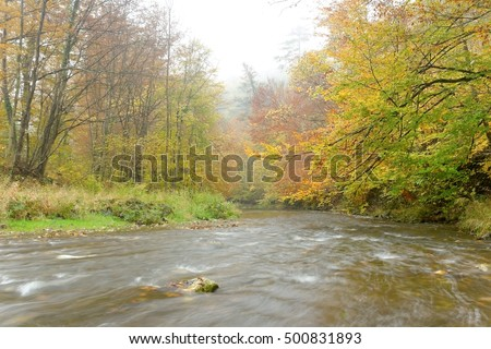 The river Schwechat in the fall time.