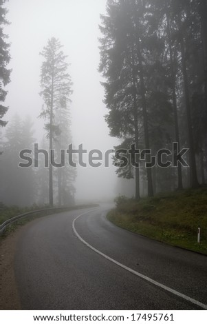 The road in the mists