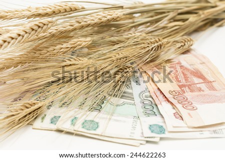 the Russian rubles are fanned out and ears of wheat on top
