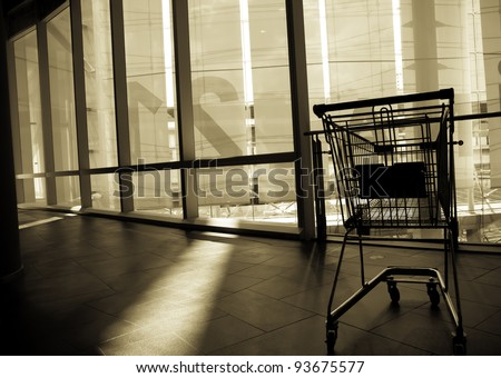 The shopping cart is abandoned after usage. Someone said the shopping is a good therapy rather than any medication for women. Agree?