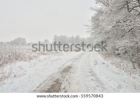 The snow-covered asphalt road surrounded by forests snow-covered trees.