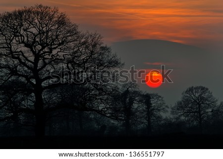 The sun burning bright orange setting behind sihouetted trees in Yorkshire.