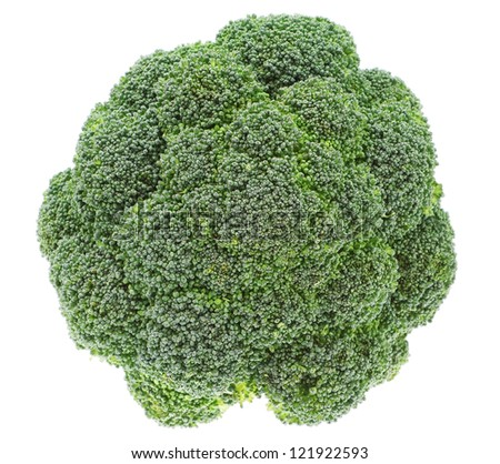 The top of vegetables broccoli on a white background. Closeup.
