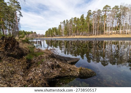 The Ural lake in pine to a pine forest, Russia