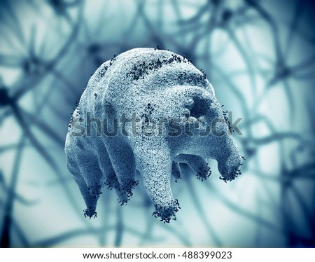 The water bear (tardigrade), the most extreme animal on our planet, 3D rendering