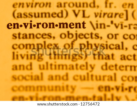 "The word ""environment"""