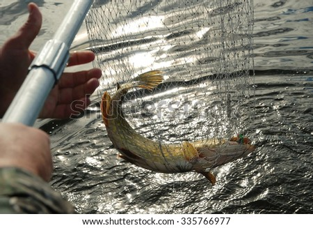 This happy moment Pike Fishing