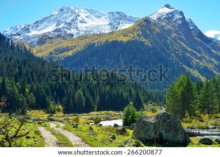 This is sunny valley in Caucasus mountains in autumn