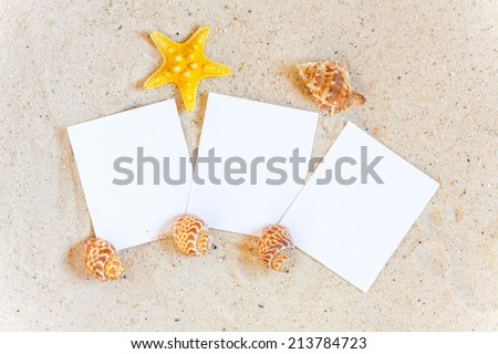 Three blank instant pictures with Seashells and Starfish in the Sand