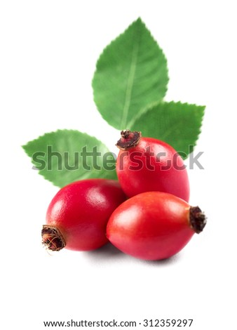 three rose hips with leaves, isolated