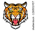 Tiger anger. Illustration of a tiger head.  Raster version, vector file also included in the portfolio. - stock photo