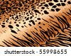 Tiger Cheetah Print Rug Background - stock photo