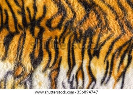 Beautiful Tiger Fur Colorful Texture Orange Stock Photo ... - photo#10