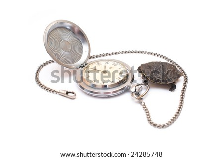 Time concept with watch ant turtle isolated over white background