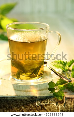 Tisane of fresh nettles in boiling water providing a refreshing healthy tea used as a natural diuretic