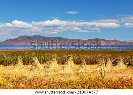 Titicaca Lake in Bolivia