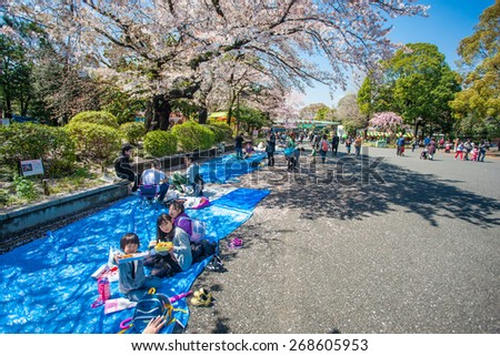 TOKYO, JAPAN - APRIL 4: Cherry blossoms festival in Ueno Park on April 4, 2014 in Tokyo, Japan. Viewing cherry blossom is a Japanese custom. Ueno Park was Japan's first public park, opened in 1873.