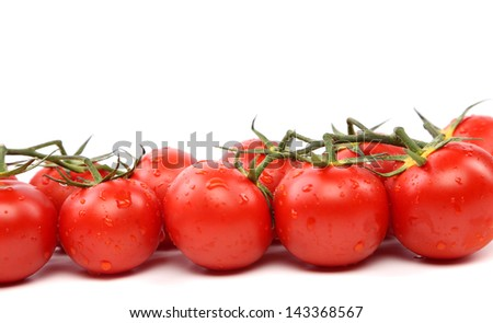 tomatoes standing in a row on a white background