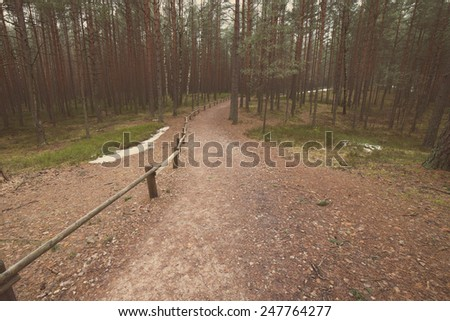 tourist trail in winter forest with snow covered trees in country - aged photo effect, vintage retro