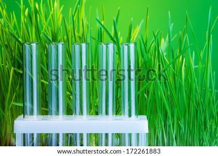 Tow of test tubes with fresh green grass on background