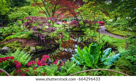 Tropical plants profusion hi res view stock photo for Typical japanese garden plants