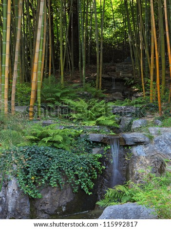 Traditional Japanese park on the bank of the Italian lake. The cascade of falls in a bamboo grove