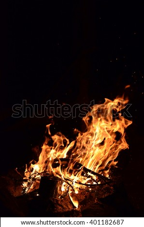 tree branches burning in a bright fire . fire illuminates the darkness of the night in the forest . bright yellow light