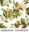 Tree in blossom - stock photo