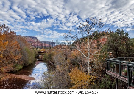 Tree lined Oak Creek, running through Oak Creek Canyon in downtown Sedona, Arizona. In the background geological features, red mesas and buttes, with beautiful blue skies, with white clouds.