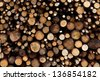 tree stumps background. - stock photo