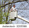 Tree Worker evaluating the job from a bucket truck - stock photo