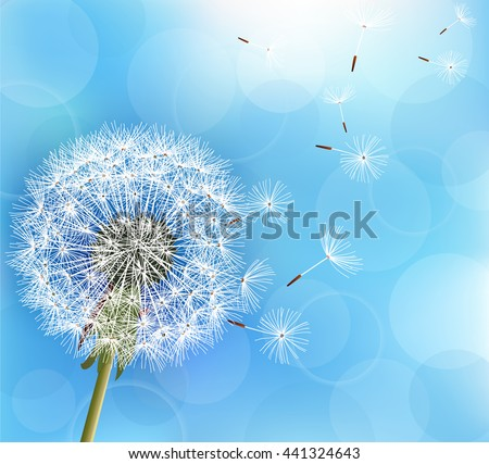 Trendy nature light blue background with flower dandelion blowing seeds. Stylish floral summer or spring wallpaper. Raster illustration