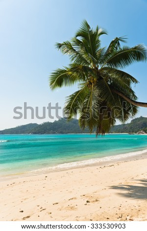 Tropical beach at Mahe island Seychelles. Vertical shot