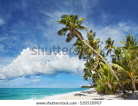 Tropical beach with palm trees and white sand