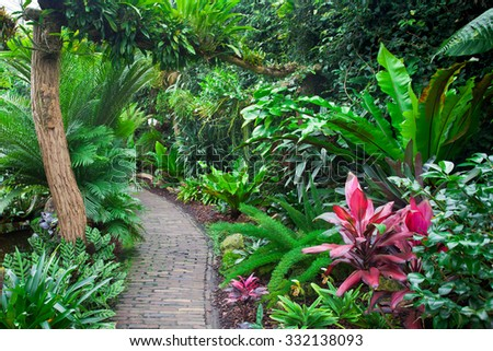Tropical garden landscape