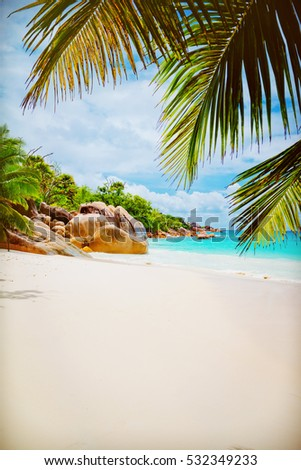 Tropical island. The Seychelles.Toned image