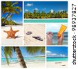 Tropical nature collage with caribbean landscape - stock photo