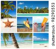 Tropical nature collage with different parts of caribbean landscape - stock photo