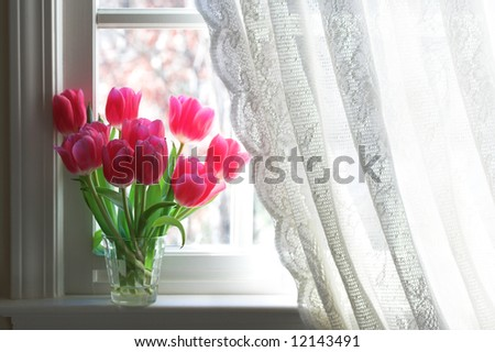 Tulips on windowsill