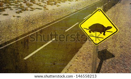 Turtle Crossing Sign on Lonely Empty Road with Grass