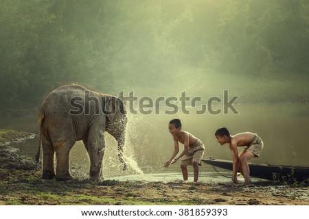 Monk Baby Elephant Stock Photo 333473861 Shutterstock