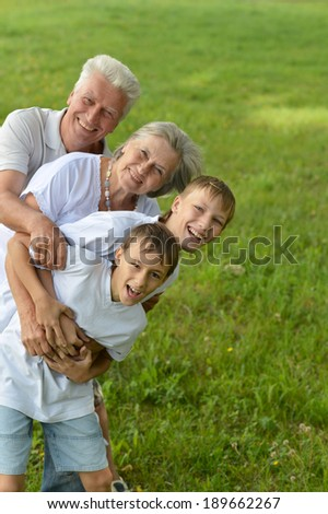 Two boys with their grandparents on a meadow in summer
