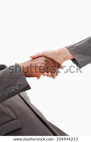 Two businesspeople are shaking hands