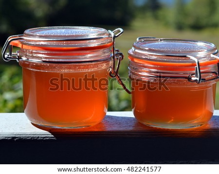 Two glass jars of homemade apple rosehip (rose hip) jelly