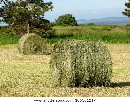 Two hay rolls in a mowed field.  Trees, meadow and hills in the background
