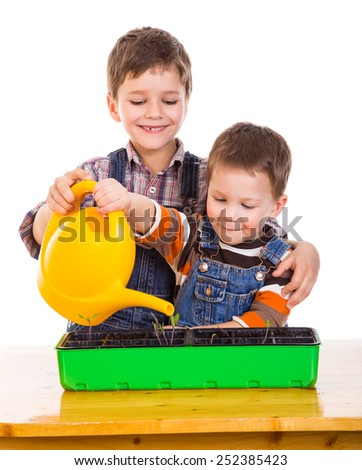 Two kids watering the seedling in the pot, isolated on white