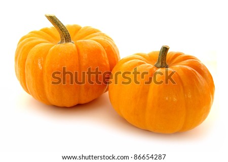Two mini pumpkins on a white background